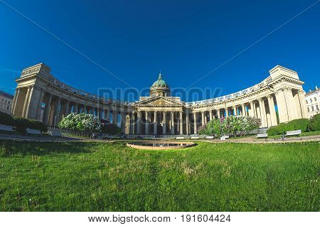 View Kazan Cathedral Grass Meadow In Saint Petersburg Summer Lilac.