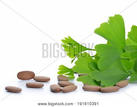 Ginkgo Biloba leaves with pills isolated on white background.