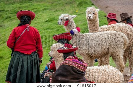 Cusco, Peru- March 17, 2017:Peruvian women with Alpaca near Cusco Peru