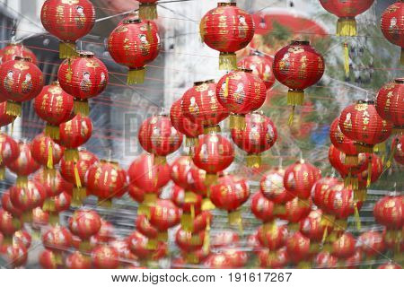Lanterns in Chinese new year day , text  bless mean wealth and healthy.