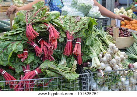 Mangold On Market