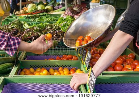 Person Buying Fresh Tomatoes At A Farm Market.