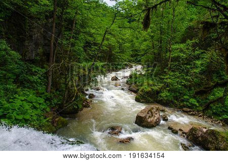 Milk waterfall flow rapid stream. Caucasus rocky mountain river in forest. Isichenko waterfall Guamka Mezmay Krasnodar Russia 23 region.