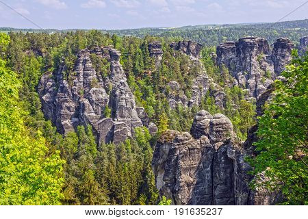 Rock green landscape in  Saxon Switzerland, Germany.