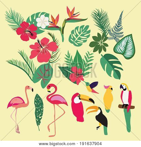 Vector Tropical set of tropical elements. Palm leaves tropical plants flowers leaves birds birds flamingo toucan parrots