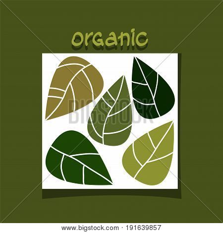 abstract simple design with green leaves. organic concept. vector