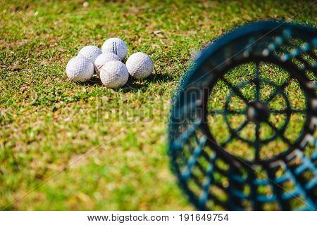 Golf Club And Balls In Grass
