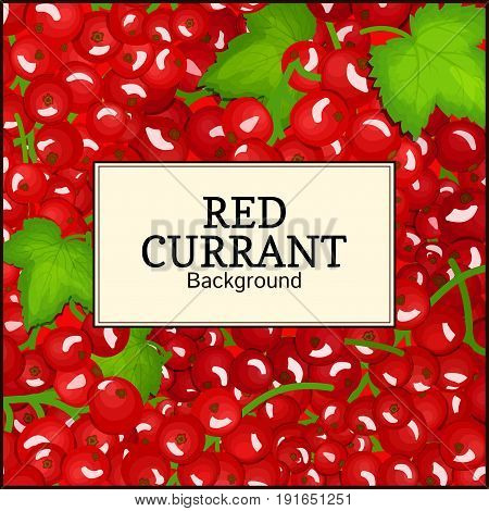 Square label on ripe red currant background. Vector card illustration. Red berry fresh and juicy currant for packaging design food, juice, jam, ice cream, smoothies, detox, cosmetics cream, tea.