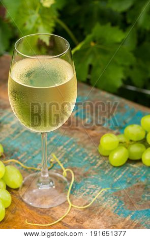 Wine glass with ice cold white wine outdoor terrace wine tasting in sunny day green vineyard garden background and white grape
