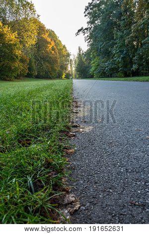 Tarmac Path In A Park During Autumn
