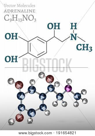 Adrenaline molecule image. Vector illustration in 3D style on a light background. Chemistry, biology, medicine and healthcare concept.