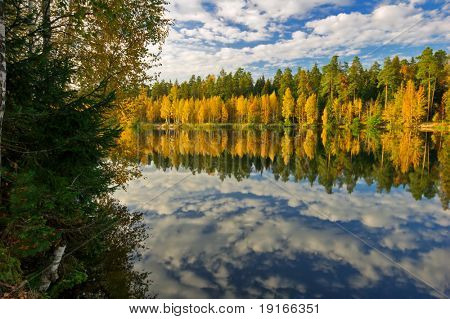 Sunny autumn lake. It is photographed in Russia. 60 kilometers from Moscow. poster