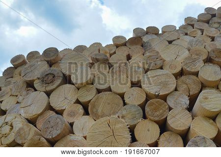 Chopped firewood. Firewood stacked and prepared for winter. Blue sky at background