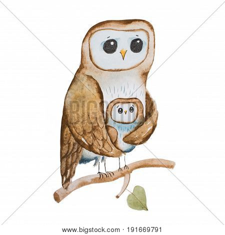 Cartoon owl mother covering owlet with wings sitting on tree branch hand-drawn.