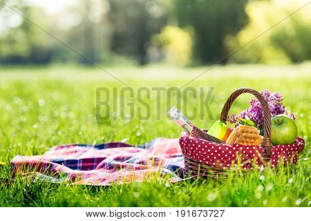 picnic basket and blanket on green grass