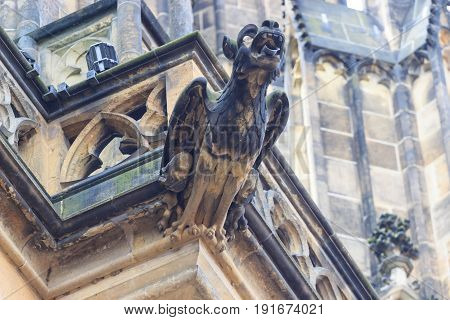 Gothic style Gargoyle on St Vitus' Cathedral Prague.