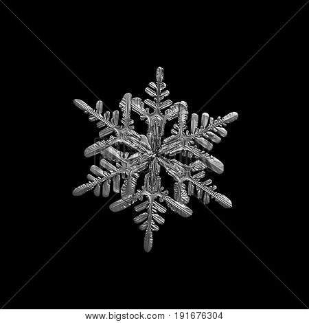 Snowflake isolated on black background. Macro photo of real snow crystal with elegant shape, relief surface and six ornate arms with side branches. Black and white version.