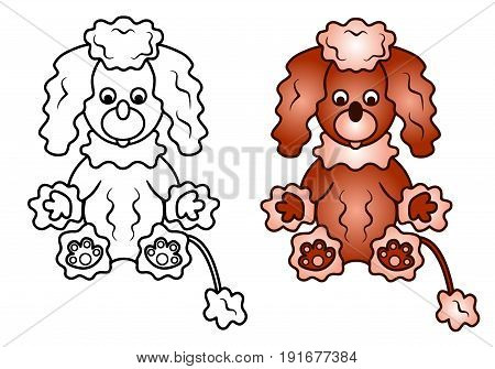 Curly Puppy of a Poodle dog colored vector illustration sketch