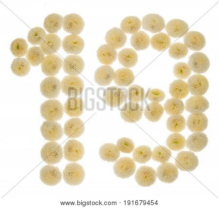 Arabic Numeral 19, Nineteen, From Cream Flowers Of Chrysanthemum, Isolated On White Background