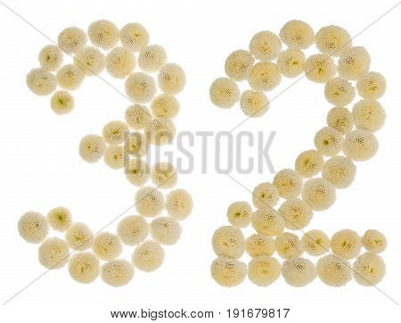 Arabic Numeral 32, Thirty Two, From Cream Flowers Of Chrysanthemum, Isolated On White Background