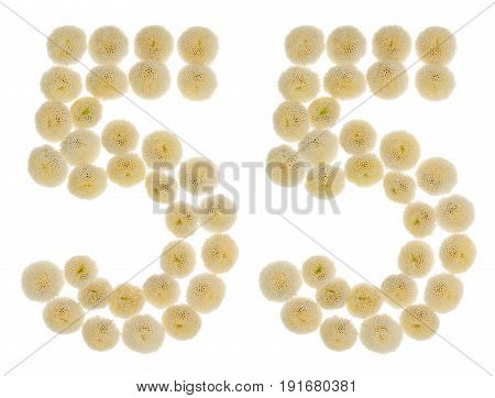 Arabic Numeral 55, Fifty Five, From Cream Flowers Of Chrysanthemum, Isolated On White Background