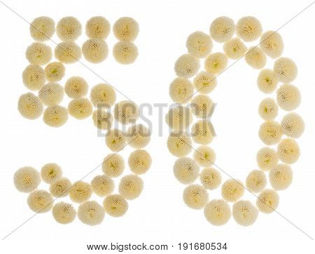 Arabic Numeral 50, Fifty, From Cream Flowers Of Chrysanthemum, Isolated On White Background
