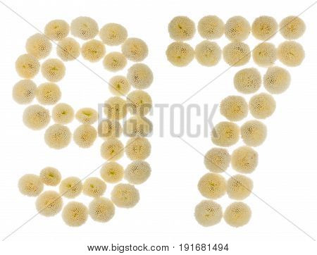 Arabic Numeral 97, Ninety Seven, From Cream Flowers Of Chrysanthemum, Isolated On White Background