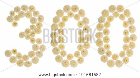 Arabic Numeral 300, Three Hundred, From Cream Flowers Of Chrysanthemum, Isolated On White Background