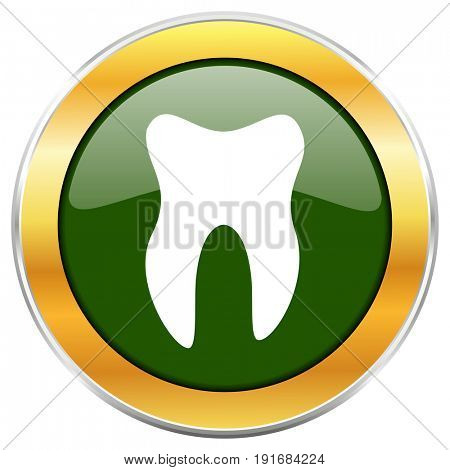 Tooth green glossy round icon with golden chrome metallic border isolated on white background for web and mobile apps designers.