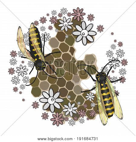 Bees Collect Honey. With Transparent