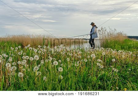 A female fisherman stands with a fishing rod on the shore of a pond. Waiting for a fish bite. In the foreground there is a glade of dandelions.