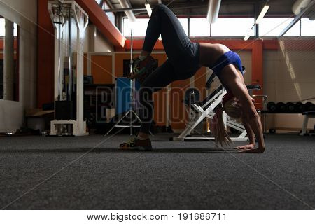Young Sporty Fit Woman Stretches