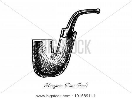 Vector hand drawn illustration of hungarian shape pipe. Also known as Oom Paul. isolated on white background.