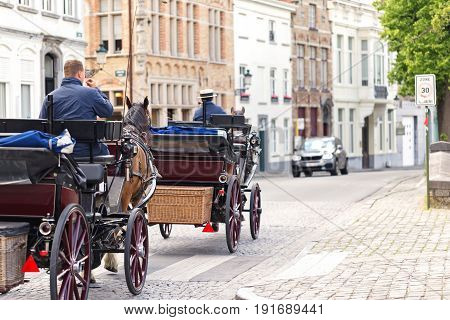 Horse crews on street of Bruges Belgium. Rear view selective focus