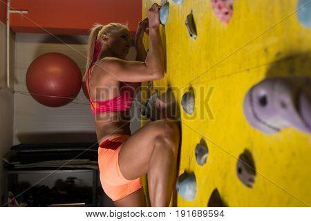 Young Woman Climbing Wall Rock Intdoor