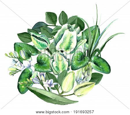 Watercolor hand drawn white and green parrot tulips, freesia, eucalyptus, lilly leaves and cyclamen bouquet. Decorative floral composition for wedding design. Round bouquet.