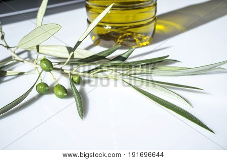 Olive oil bottled with young olives branch. Isolated over white