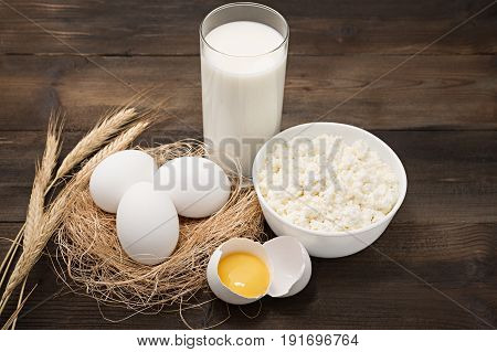 Dairy products on wooden background. Cottage cheese, milk, egg and egg yolk. Top view with copy