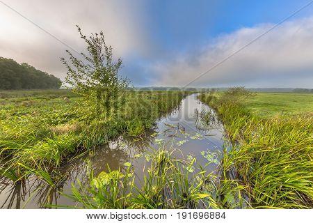 Bright Summer Landscape River Landscape