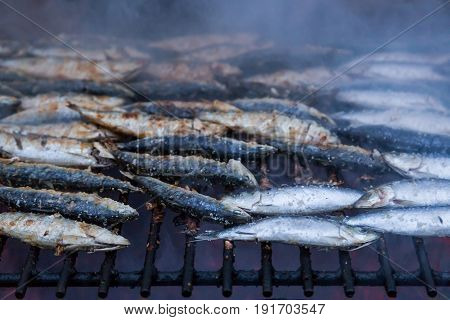 sardines on grill on street bbq. hot tipical portugese food