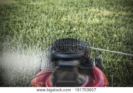 Broken lawn mower cutting green grass in backyard garden service.