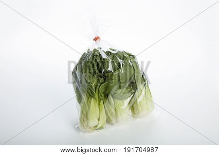 Green Bok choy vegetable on white background