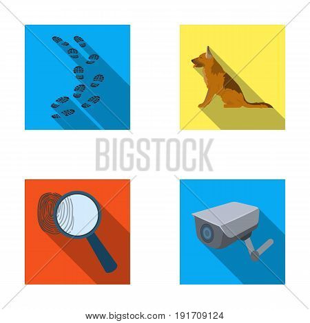 Traces on the ground, service shepherd, security camera, fingerprint. Prison set collection icons in flat style vector symbol stock illustration .