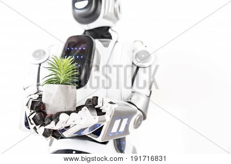 In connection with real world. Robot is holding flowerpot with small green plant. Focus on flower. Isolated