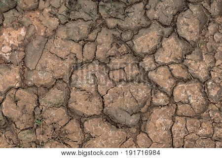 Drought dry ground texture, Ground dry background.