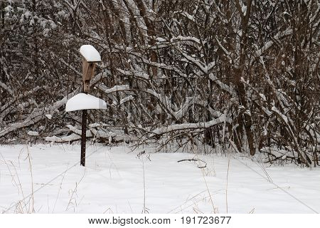 Snowy Birdhouse in a Snow Storm at the Edge of a Frozen Meadow