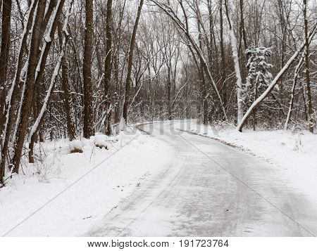 Snowy Trail through the Forest in Minneapolis, Minnesota, USA