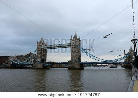 Tower Bridge over the River Thames with Flying Gulls