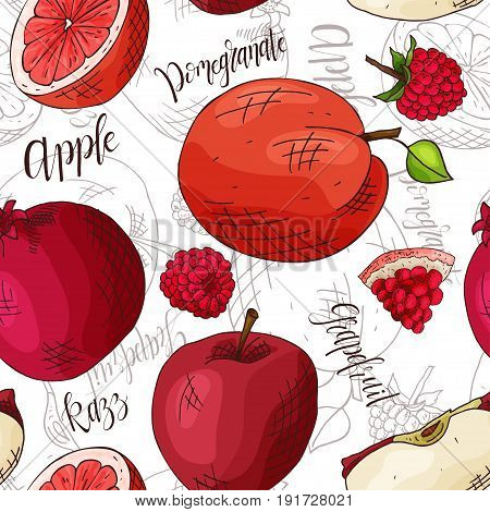 Vector seamless pattern with fruits. apple and razz and pomegranate and grapefruit background. Hand drawn elements