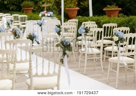 Elegant Chairs Decorated For Wedding Ceremony Stand By The Path To The Altar